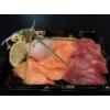 Sashimi box - 12 stuks